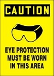 Mandatory Eye Protection Sign (Plastic)