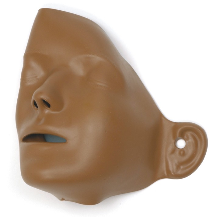 Adult Manikin Faces, Brown Skin / 6 Pack