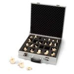 Suitcase Set of 24 Vertebrae (Bonelike Vertebrae)