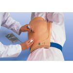 Intra-Muscular Injection Pad