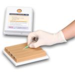 Four-Vein Venipuncture Training Aid Latex Free Dermalike II™ & V™ (Lightly Pigmented)