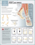 Strengthening the Foot & Ankle Chart PAPER